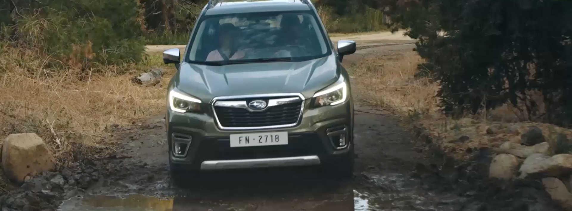Experience the Performance of the 2019 Subaru Forester | Subaru